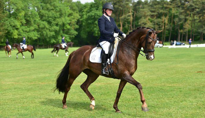 instructie les paard pony